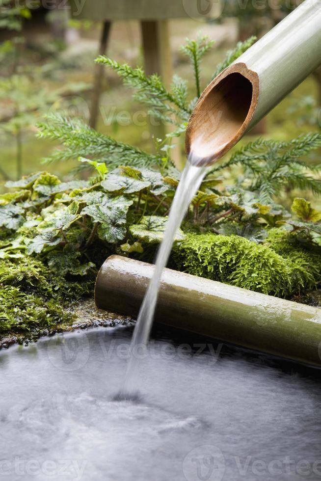 agua que fluye de la tubería de bambú foto