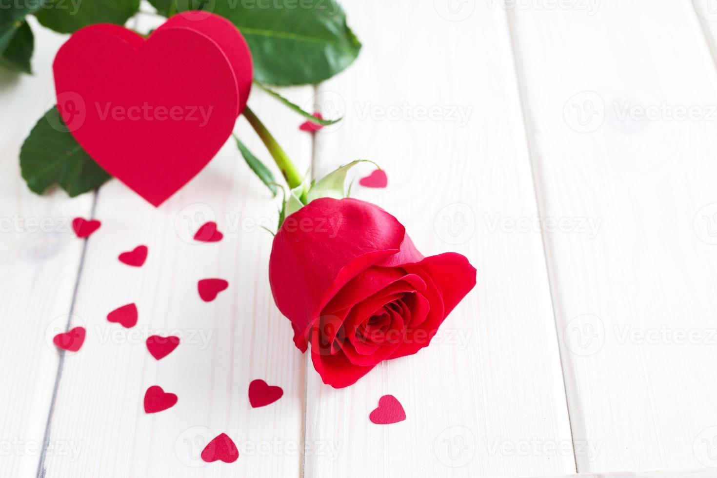 rosa roja y corazones pequeños foto