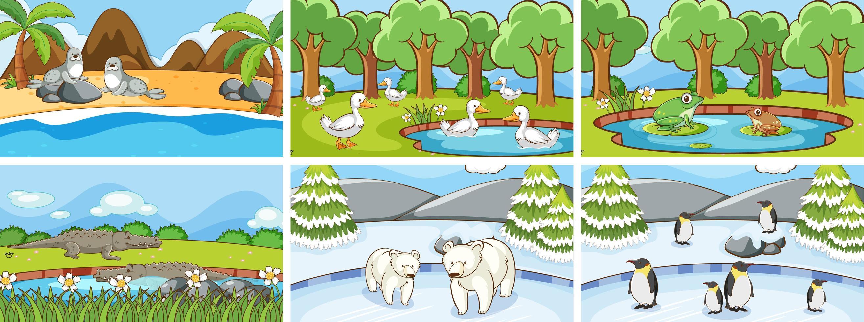 escenas de fondo de animales en el conjunto salvaje. vector