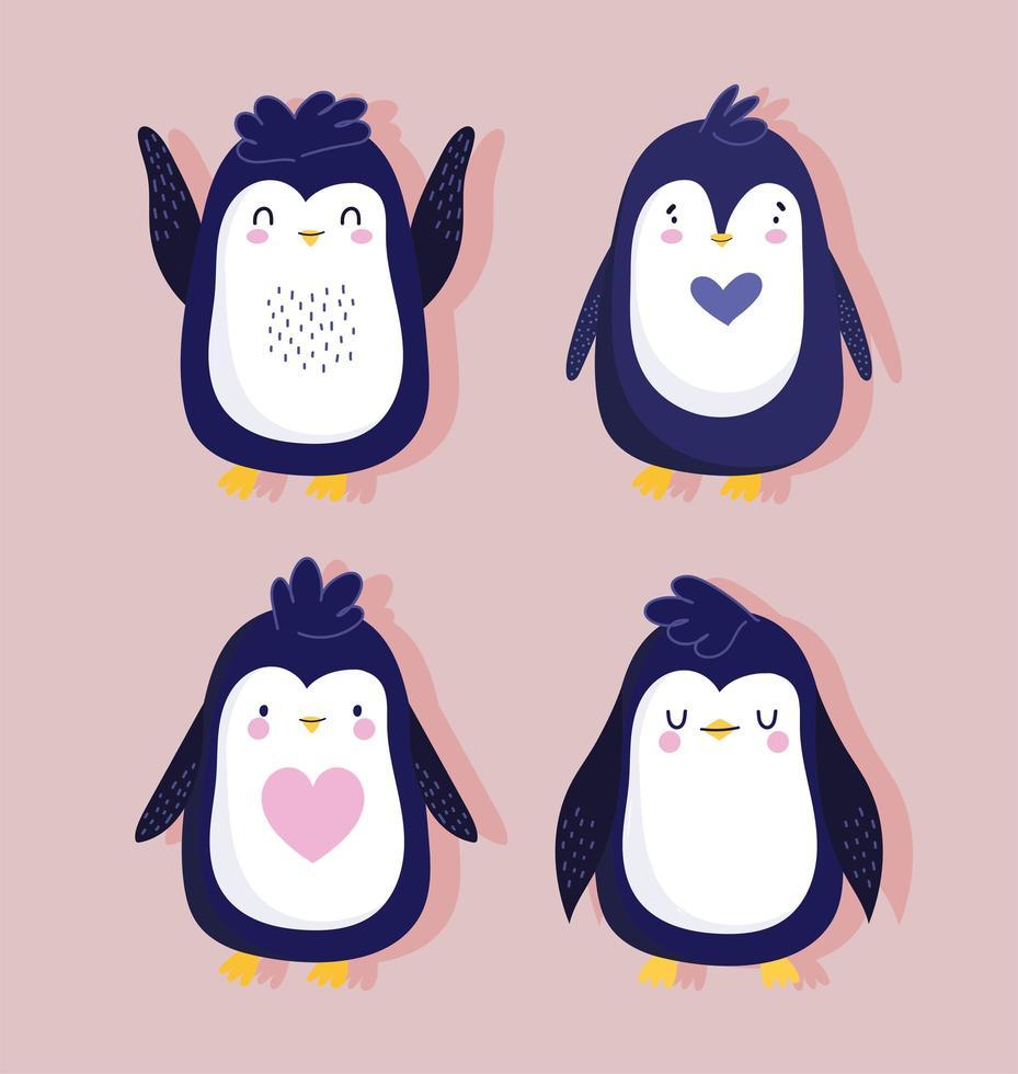 Pinguin Vogel hübsches Tier vektor