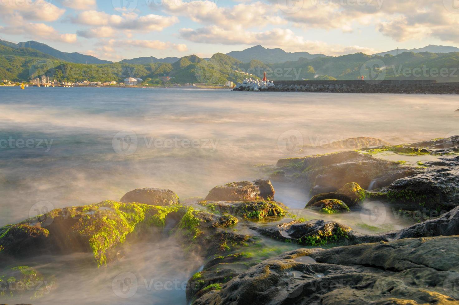 arrecife verde foto