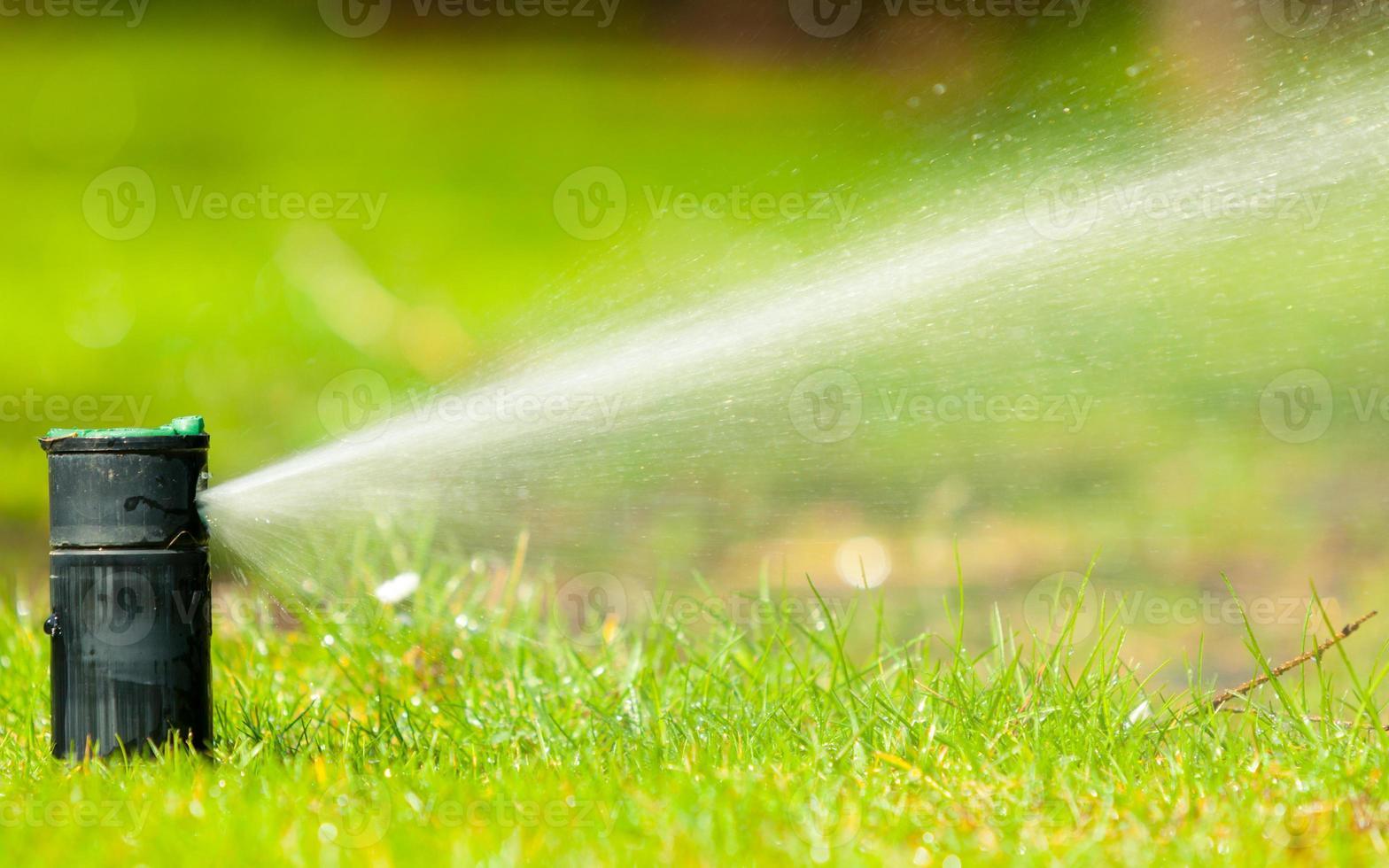 Gardening. Lawn sprinkler spraying water over grass. photo