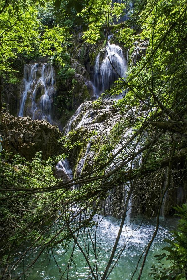 Waterfall in the Wild photo