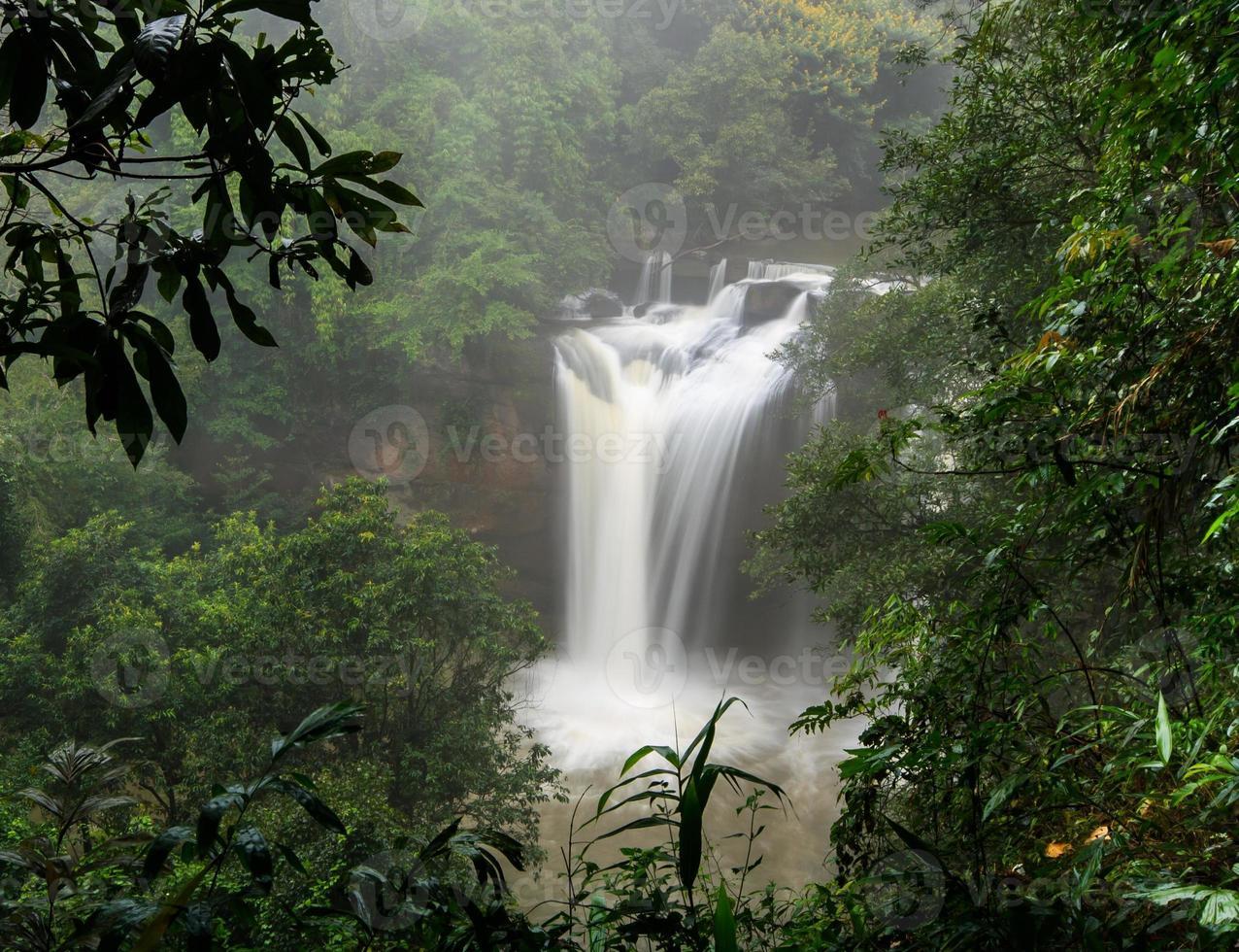 waterfall in rainforest photo