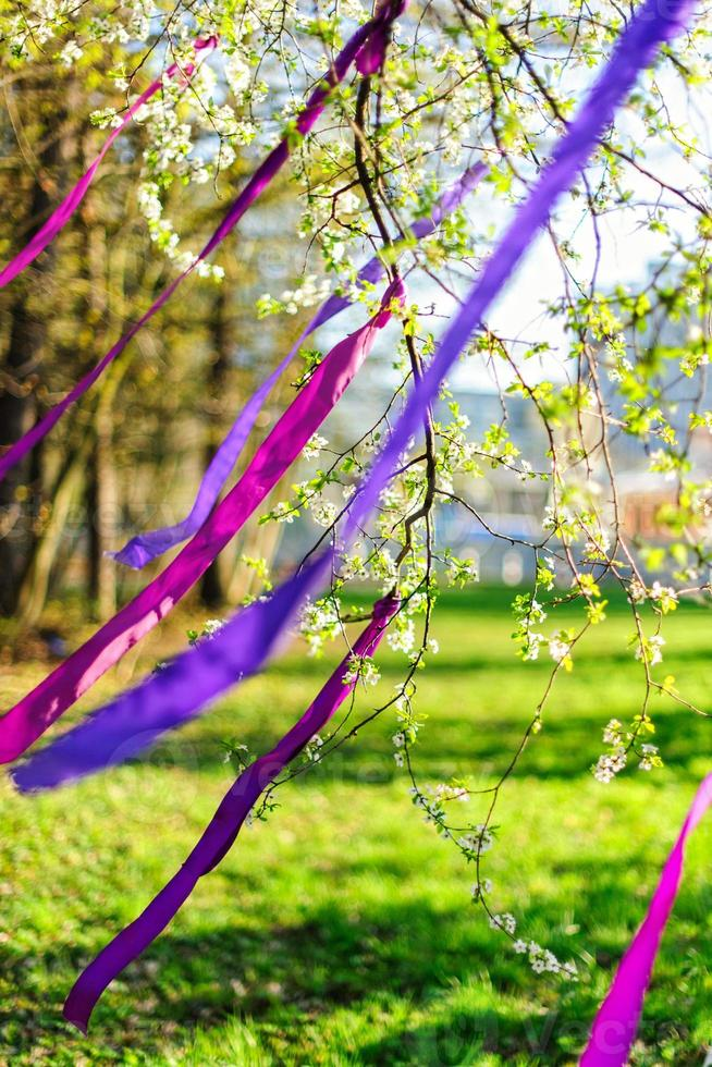 Blooming branch decorated with purple ribbons / wind photo
