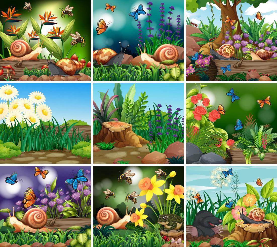 conjunto de escenas de la naturaleza de fondo con flores vector