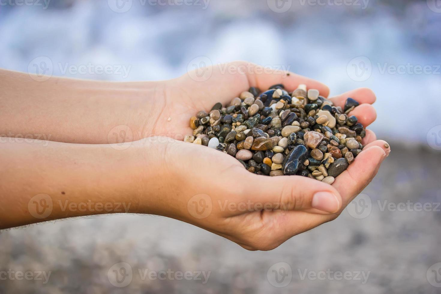 The girl is holding a sea stones photo