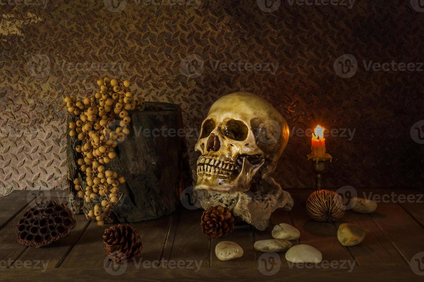 Still Life with a Skull. photo