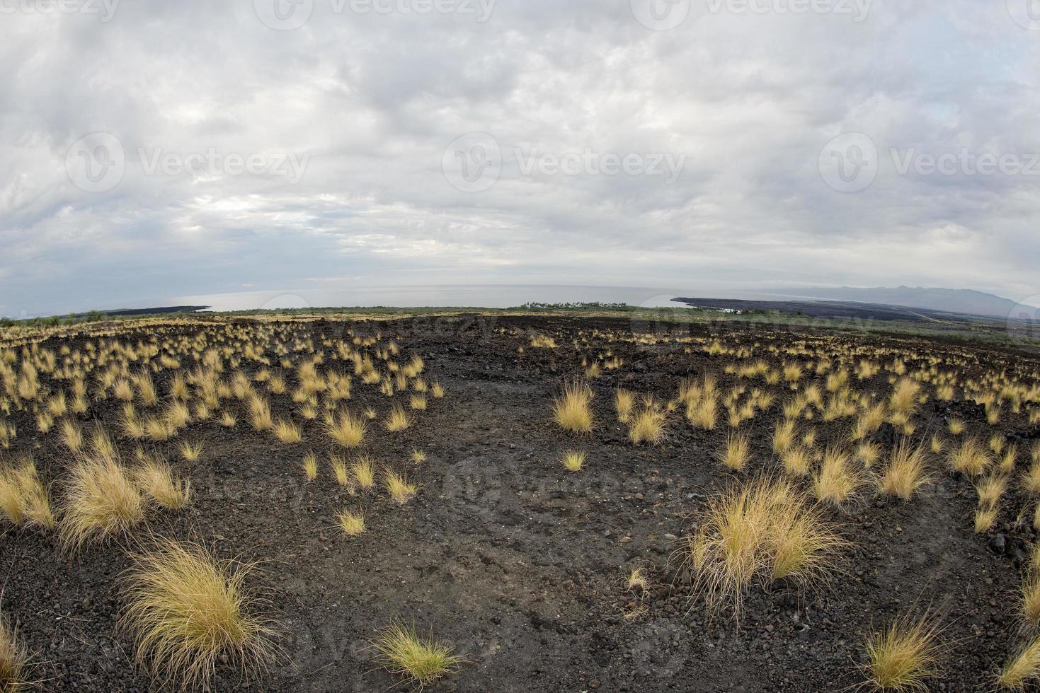 big island hawaii lava and sea landscape view photo