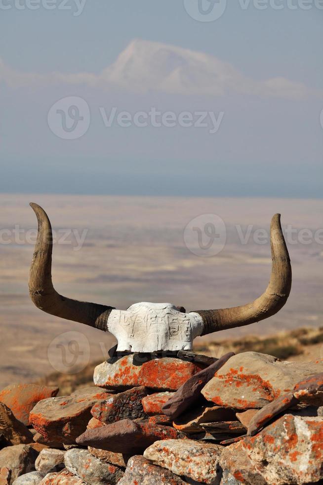 crânio de iaque decorado com mantras budistas foto