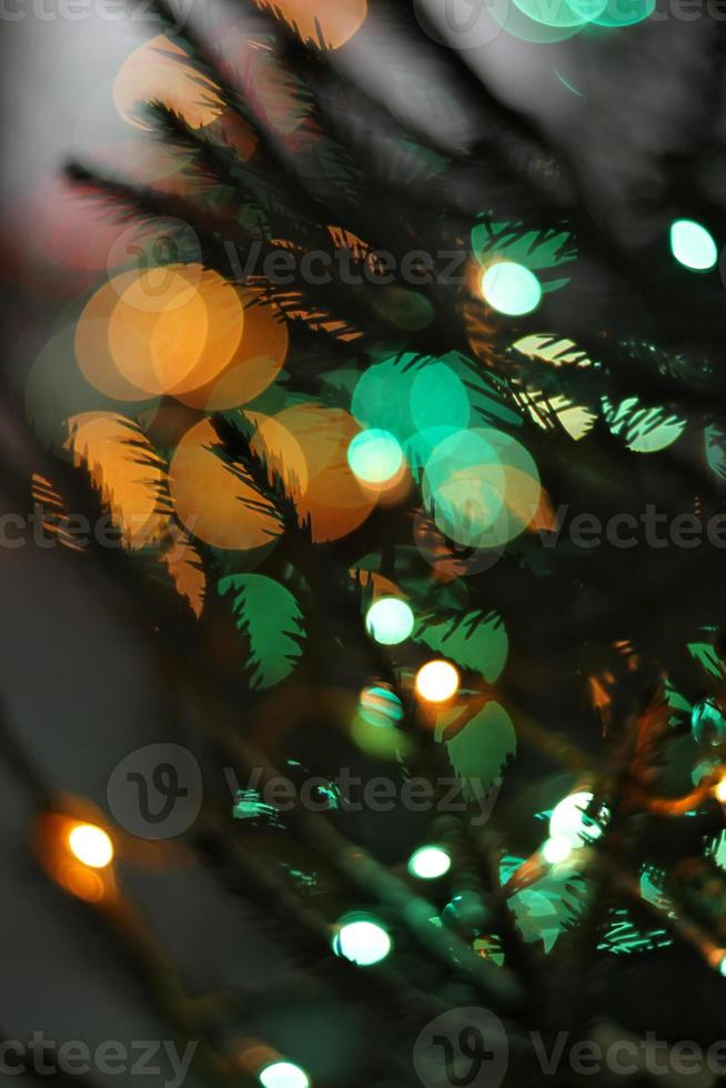 Christmas winter background, spruce and light photo