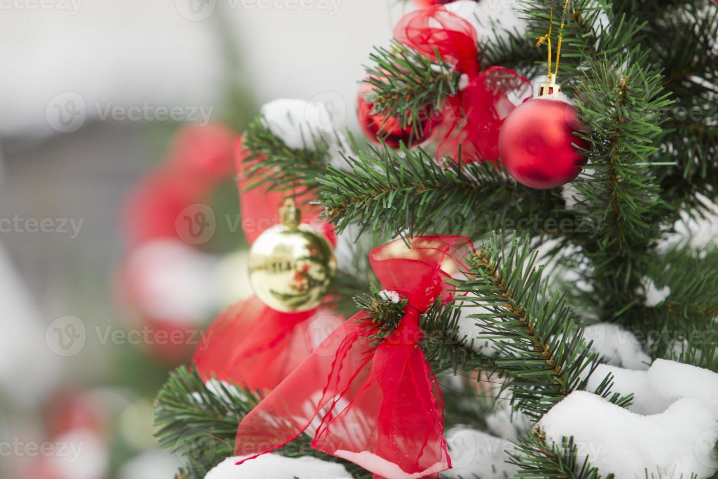 bolas de navidad colgando de un árbol de navidad cubierto de nieve foto