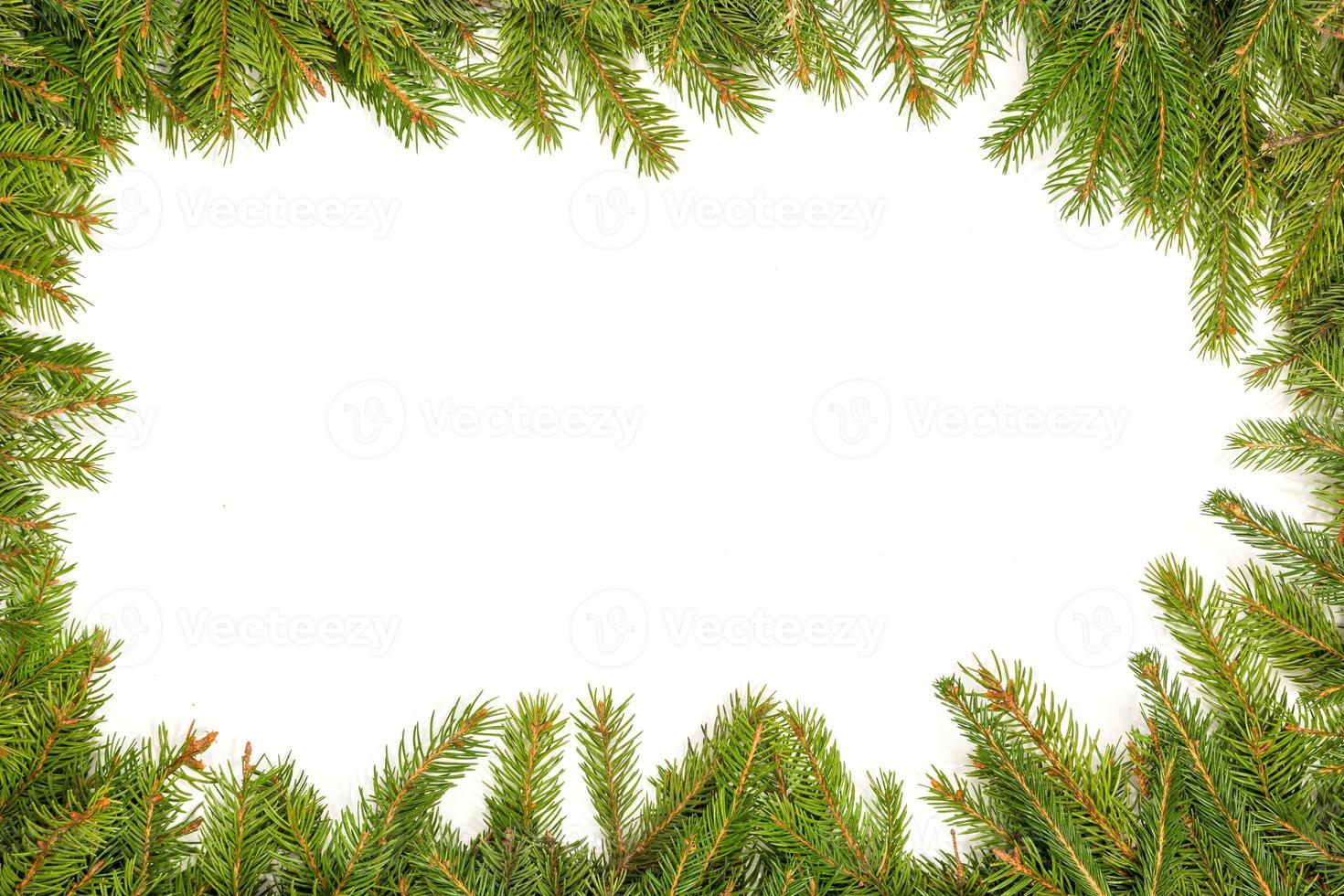 Christmas background. Eve framework photo
