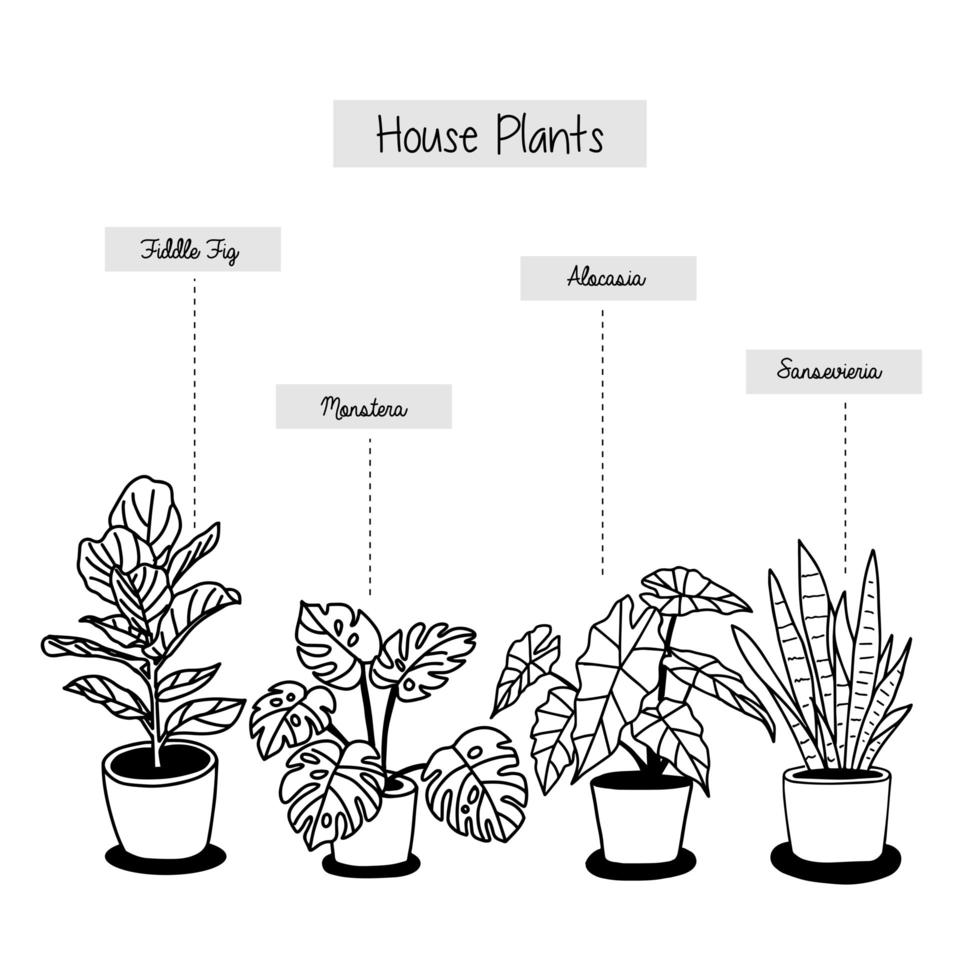 plantas de casa tropical dibujadas a mano en macetas vector