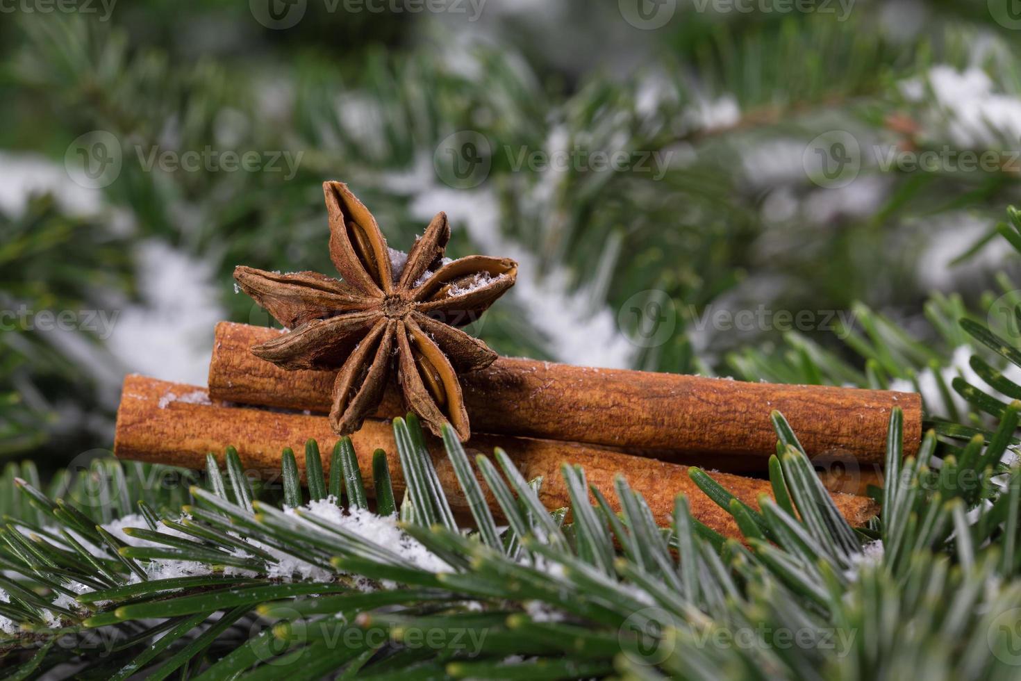 especias navideñas, canela y anís estrellado foto