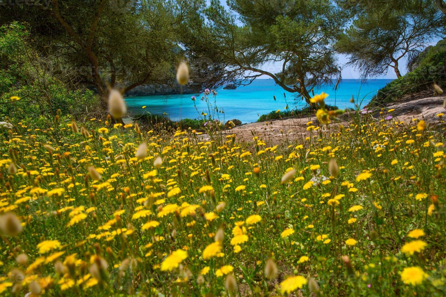 Cala Macarella Menorca turquoise Balearic Mediterranean photo