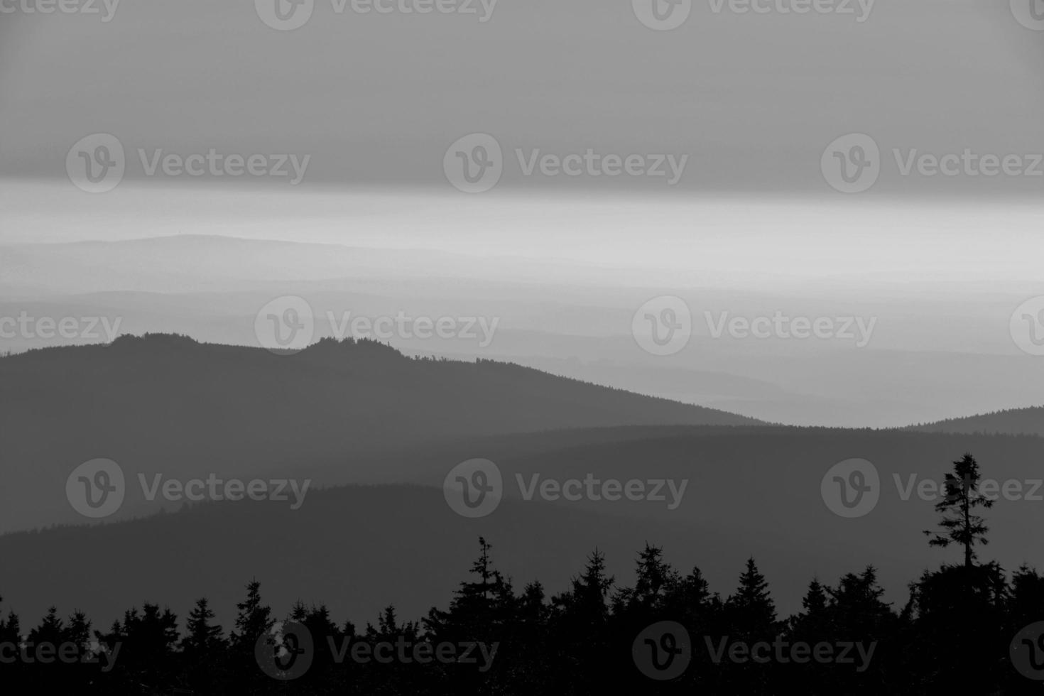 Harz National Park photo