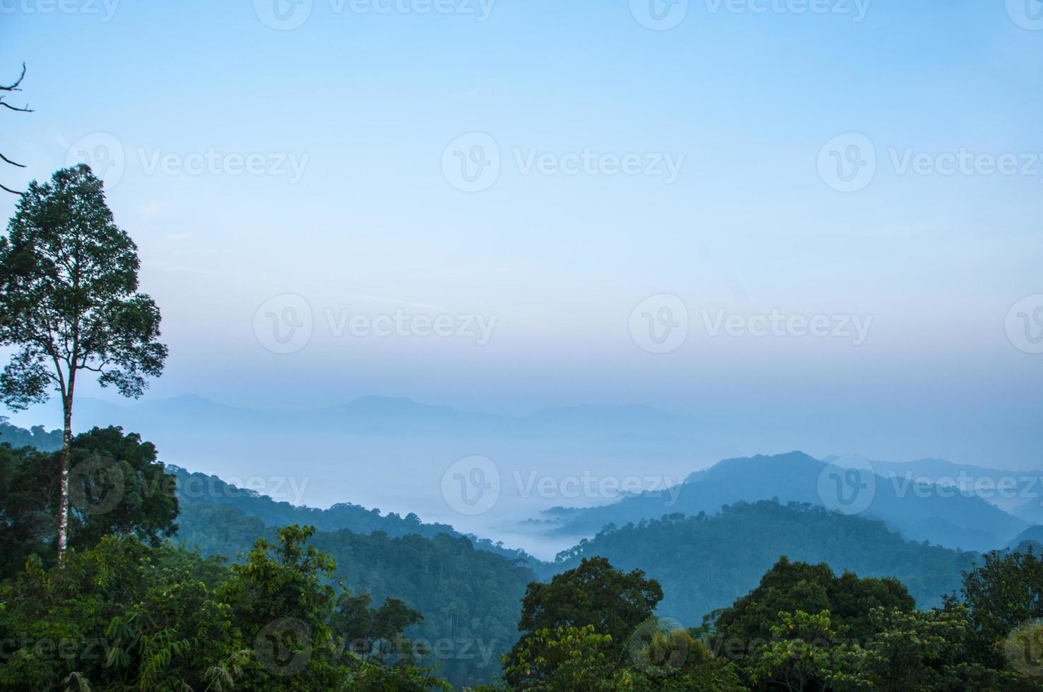 Morning mist Kaeng Krachan National Park, Phetchaburi photo