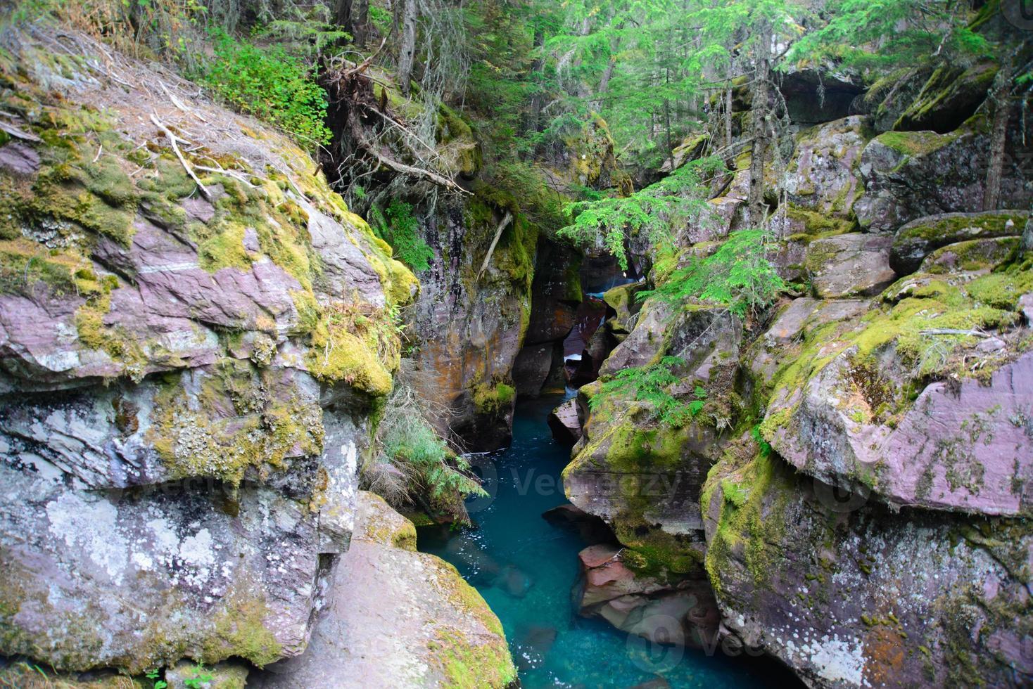 Avalanche Gorge photo