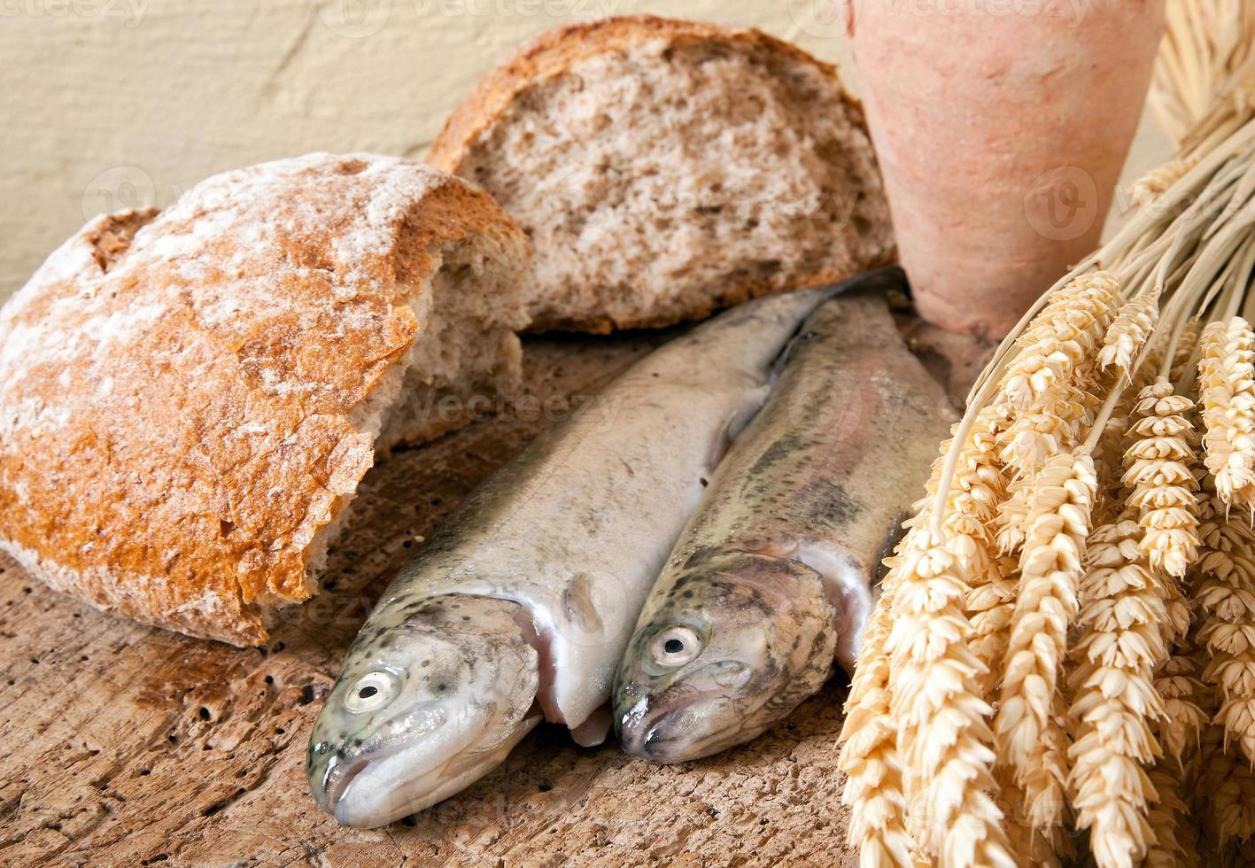 Wine bread and fish photo