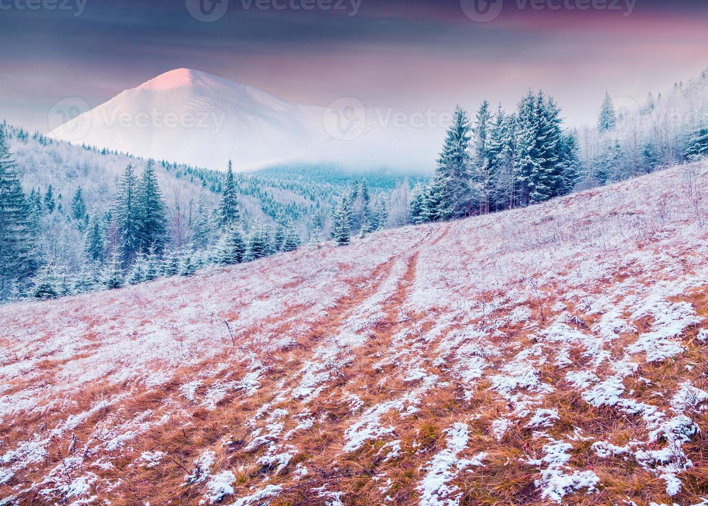colorido amanecer de invierno en las montañas de los Cárpatos. foto