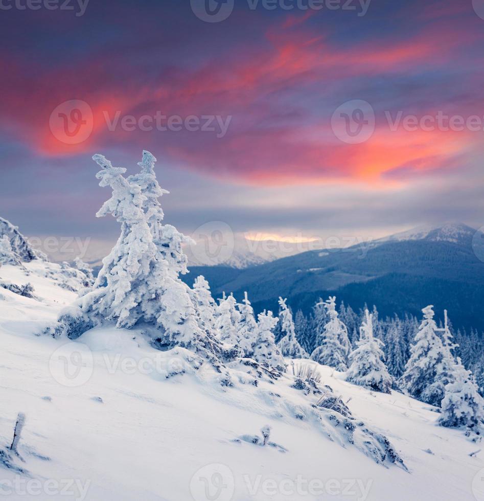 colorido amanecer de invierno en las montañas. foto