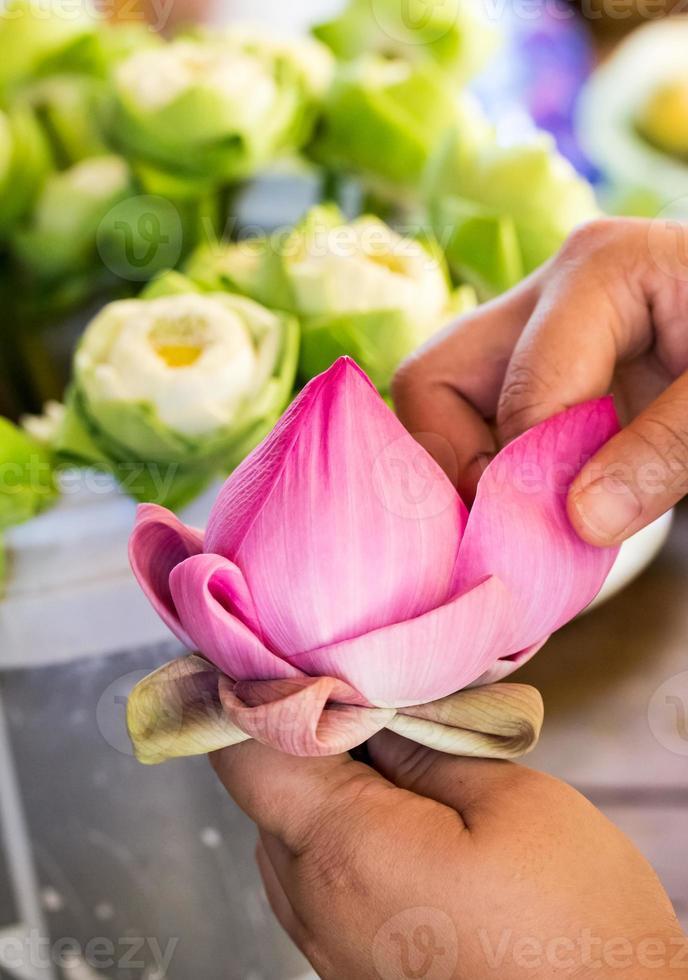 mulher dobrando pétala de lótus rosa para orar Buda em tailandês foto