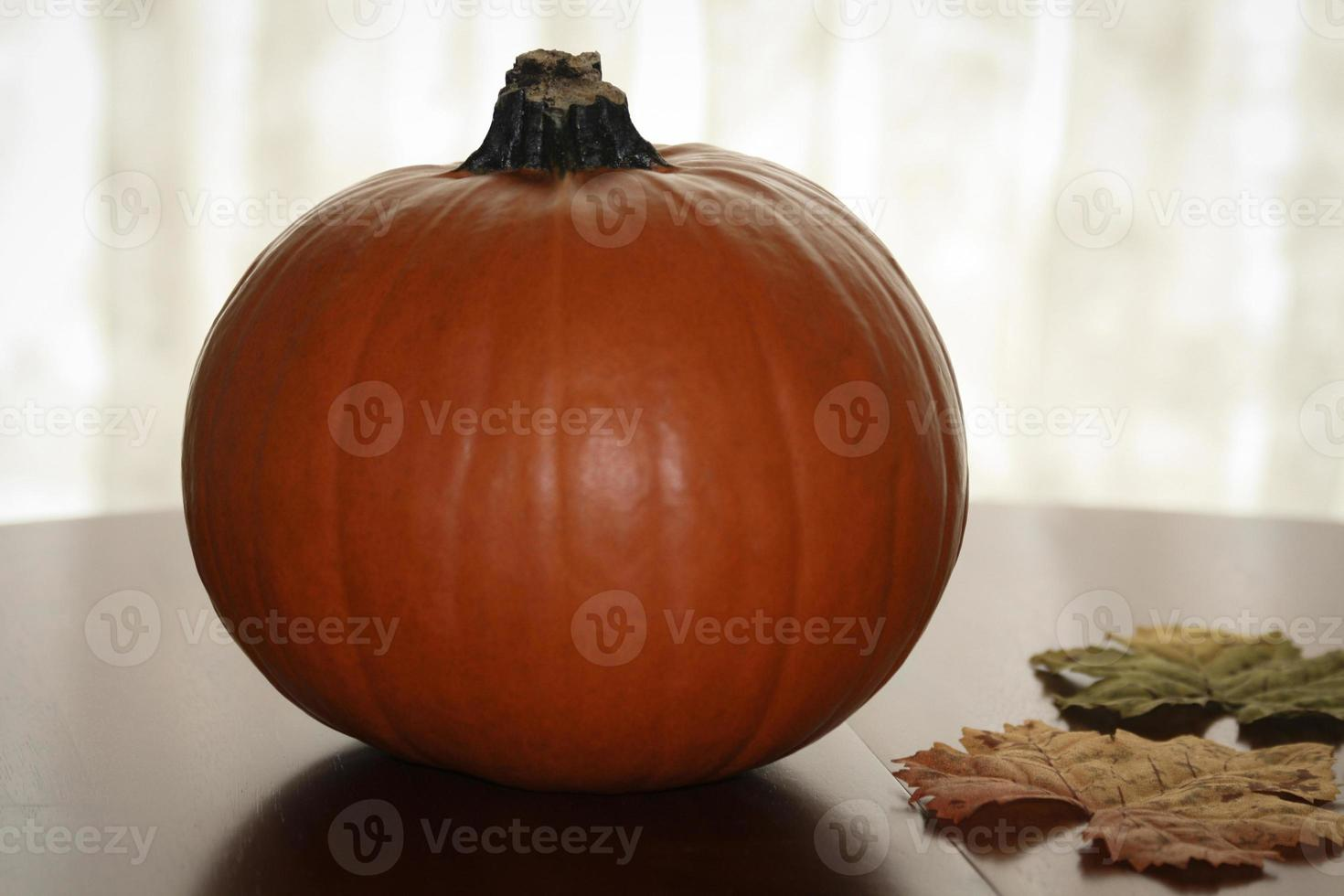 Autumn Pumpkin photo