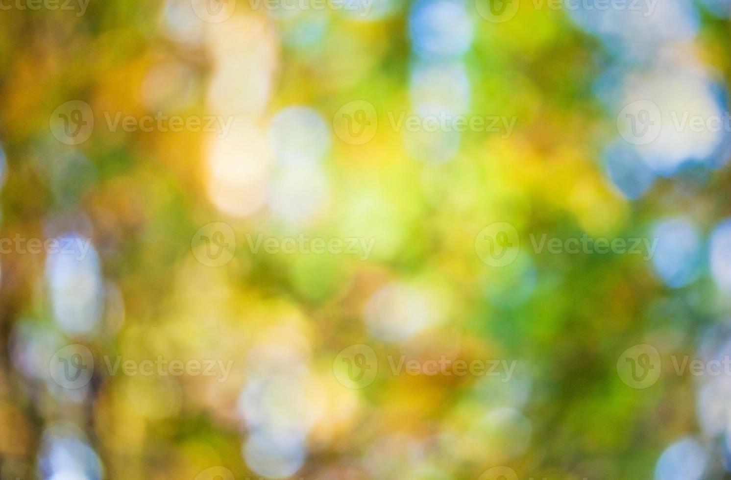 bokeh de otoño foto