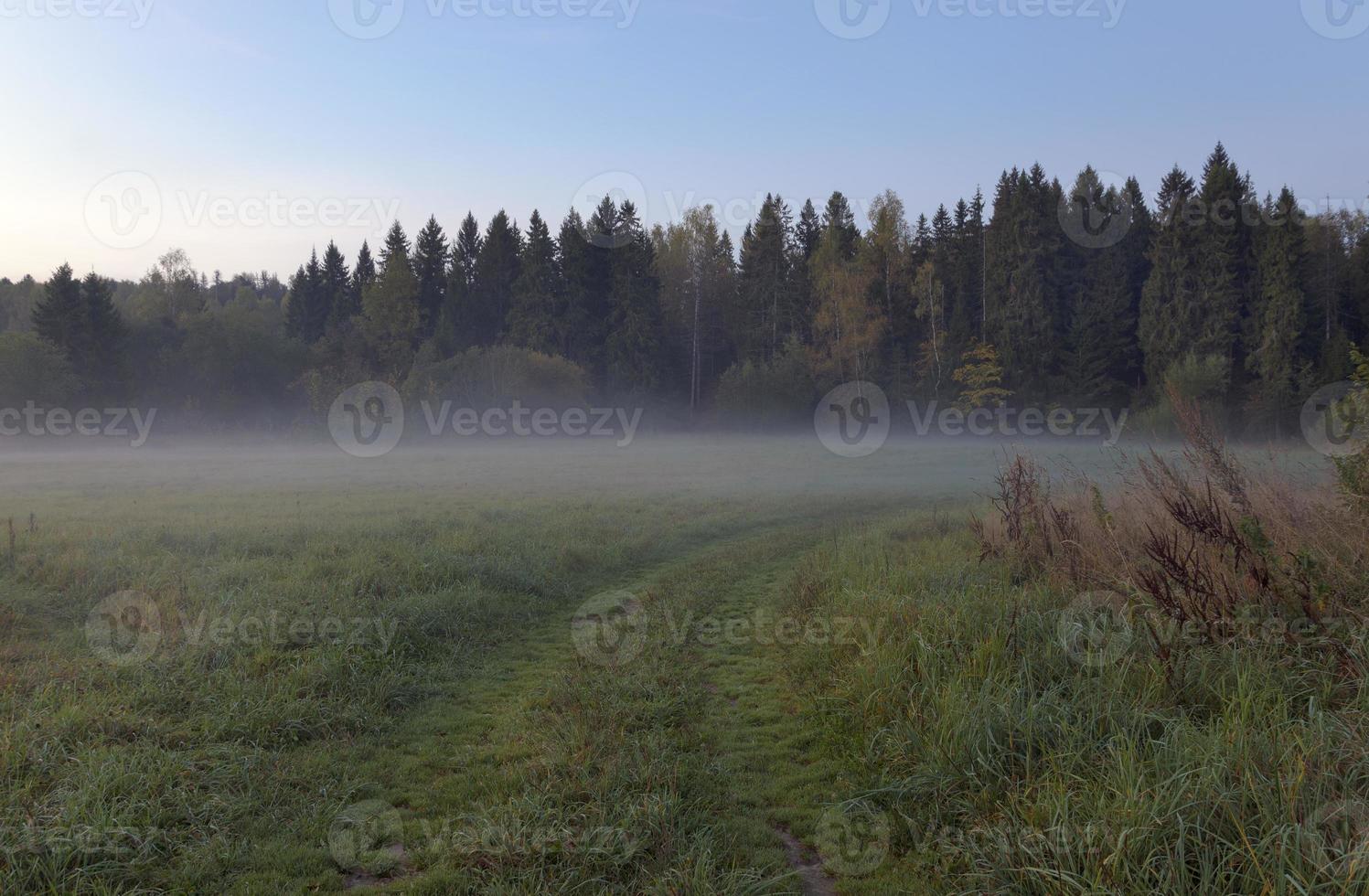 Autumn morning photo