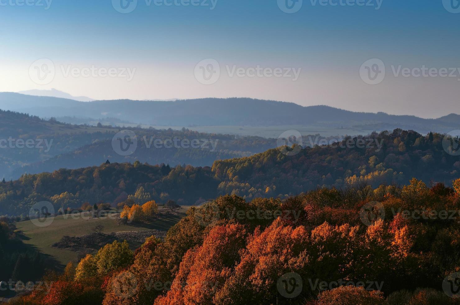 natureza de outono foto