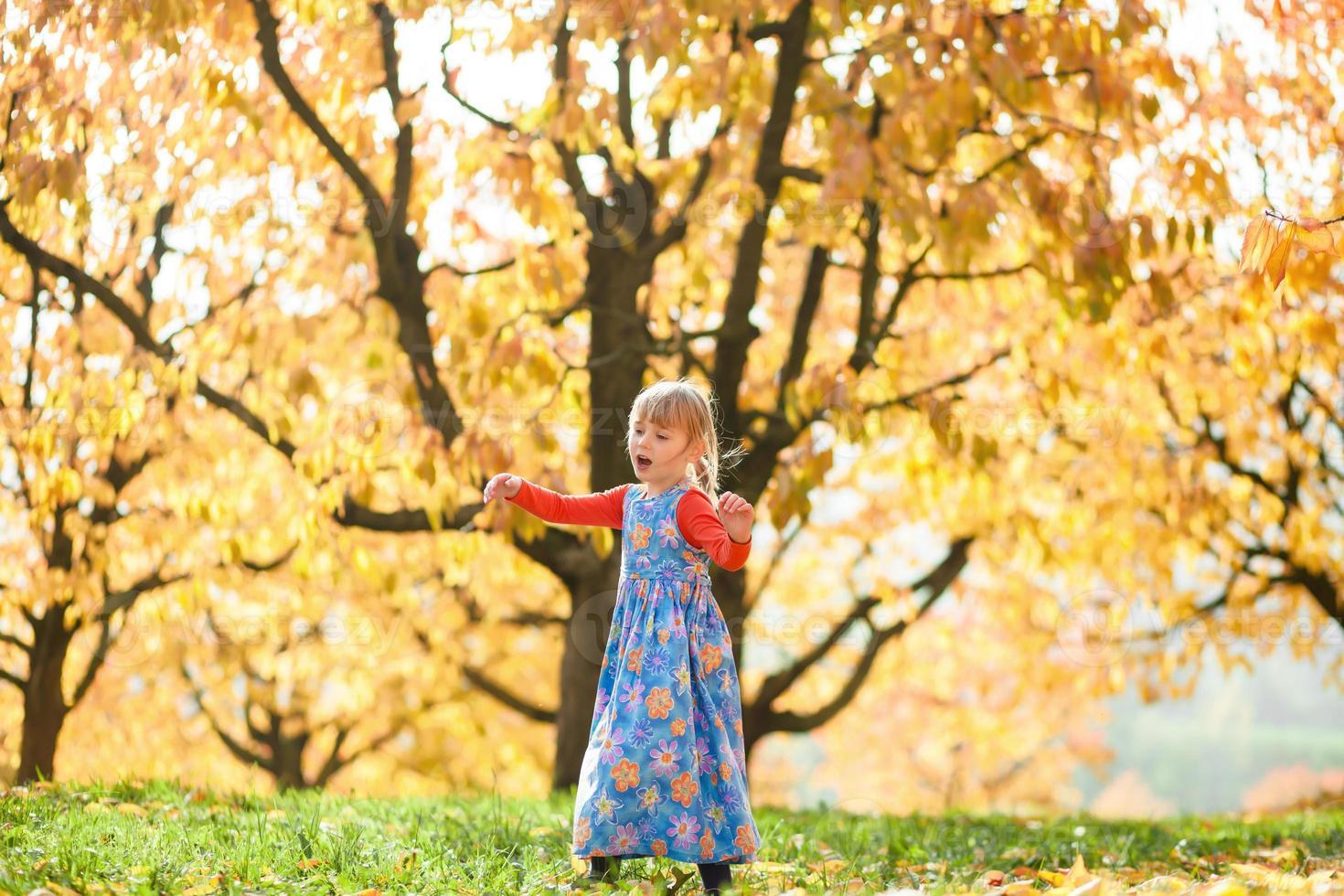 diversão de outono foto