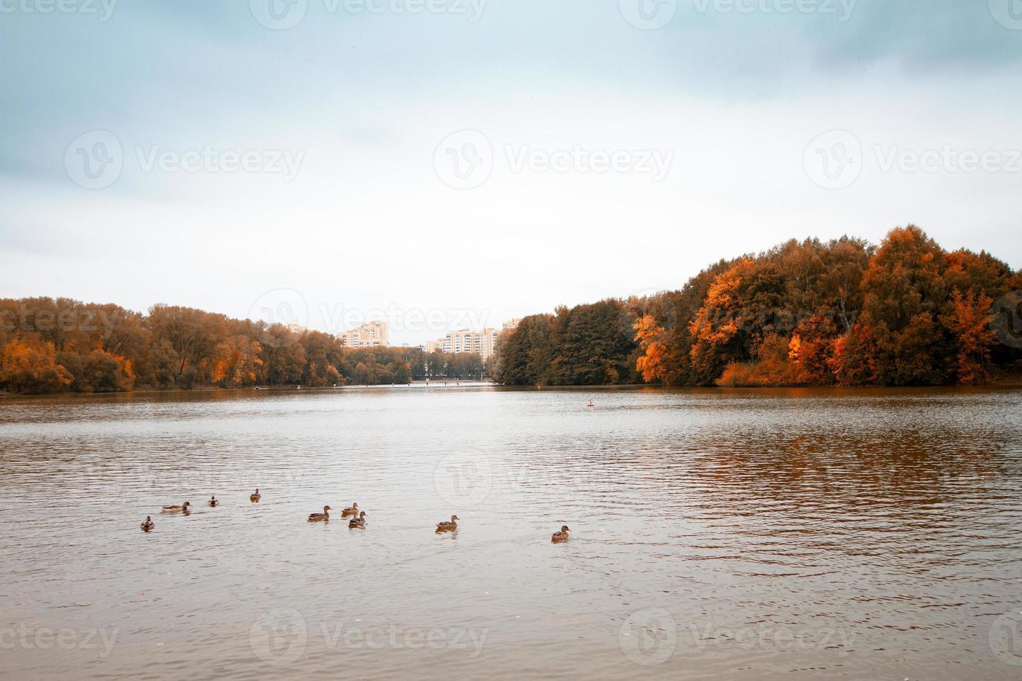rainy autumn photo