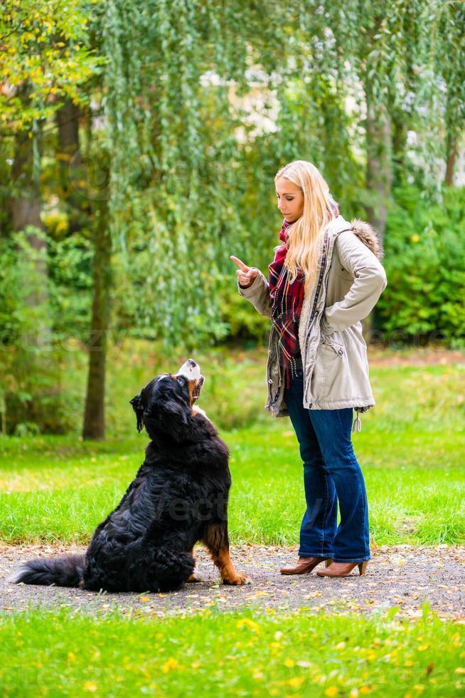Chica en el parque de otoño entrenando a su perro en obediencia foto