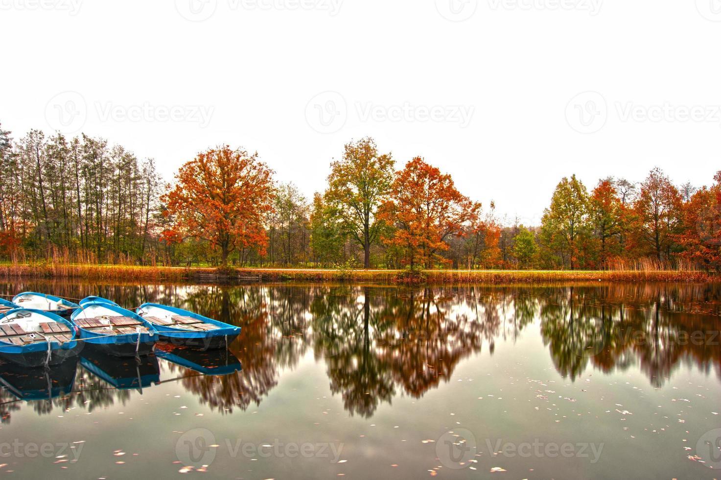 vista de otoño foto