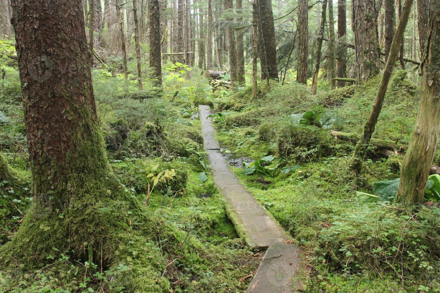 juneau alaska - ciudad y paisajes foto