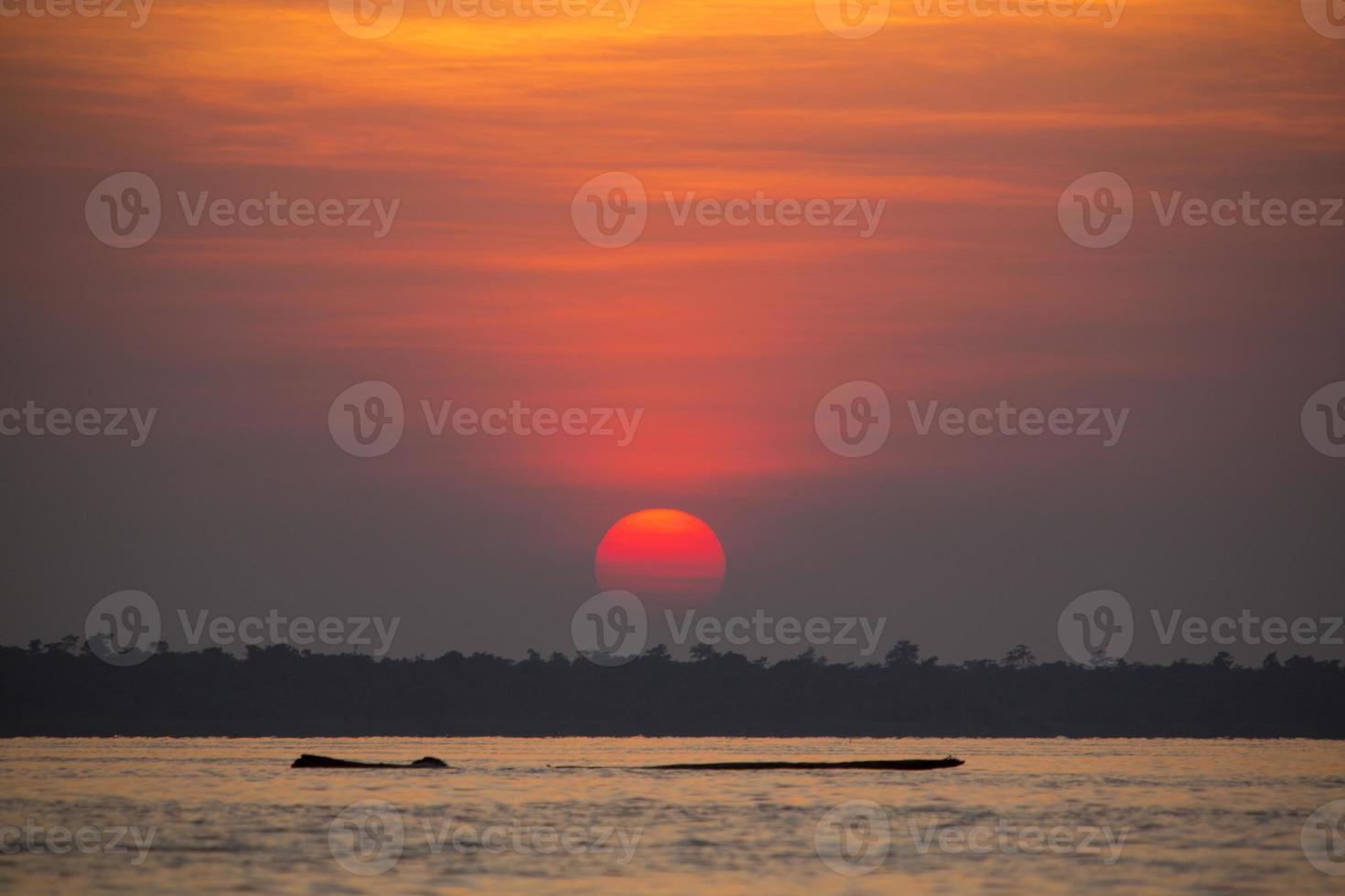 puesta de sol y árbol muerto flotante en el lago de maracaibo foto