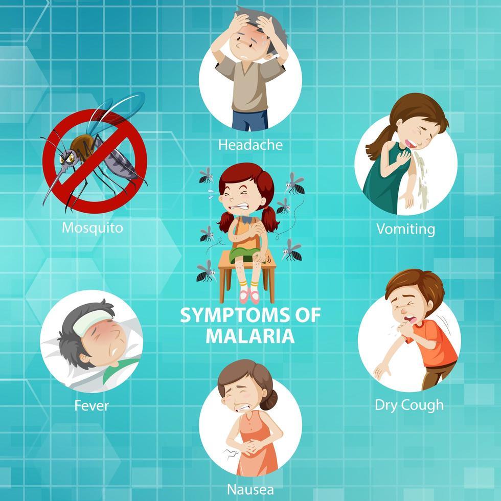 síntomas de la malaria infografía estilo de dibujos animados vector