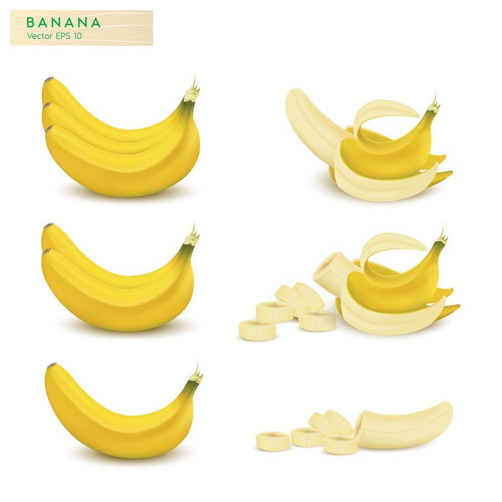 conjunto de frutas de plátano realista vector