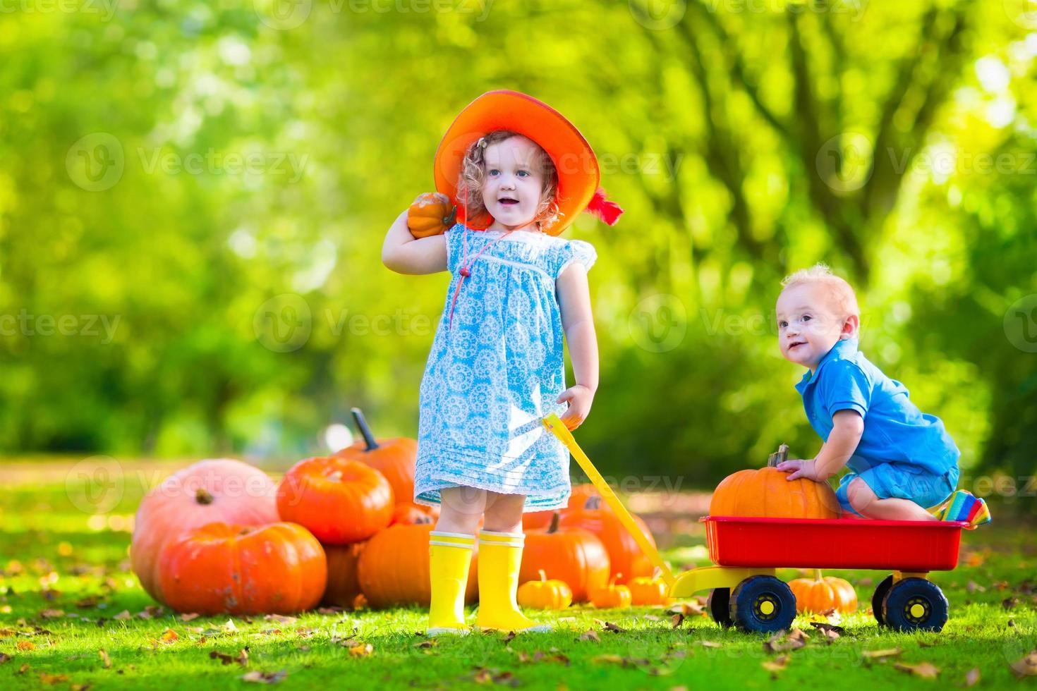 Kids at Halloween pumpkin patch photo