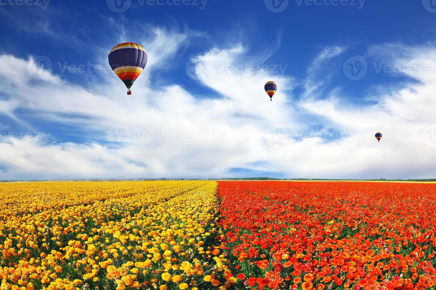 Three balloons flying over the field photo