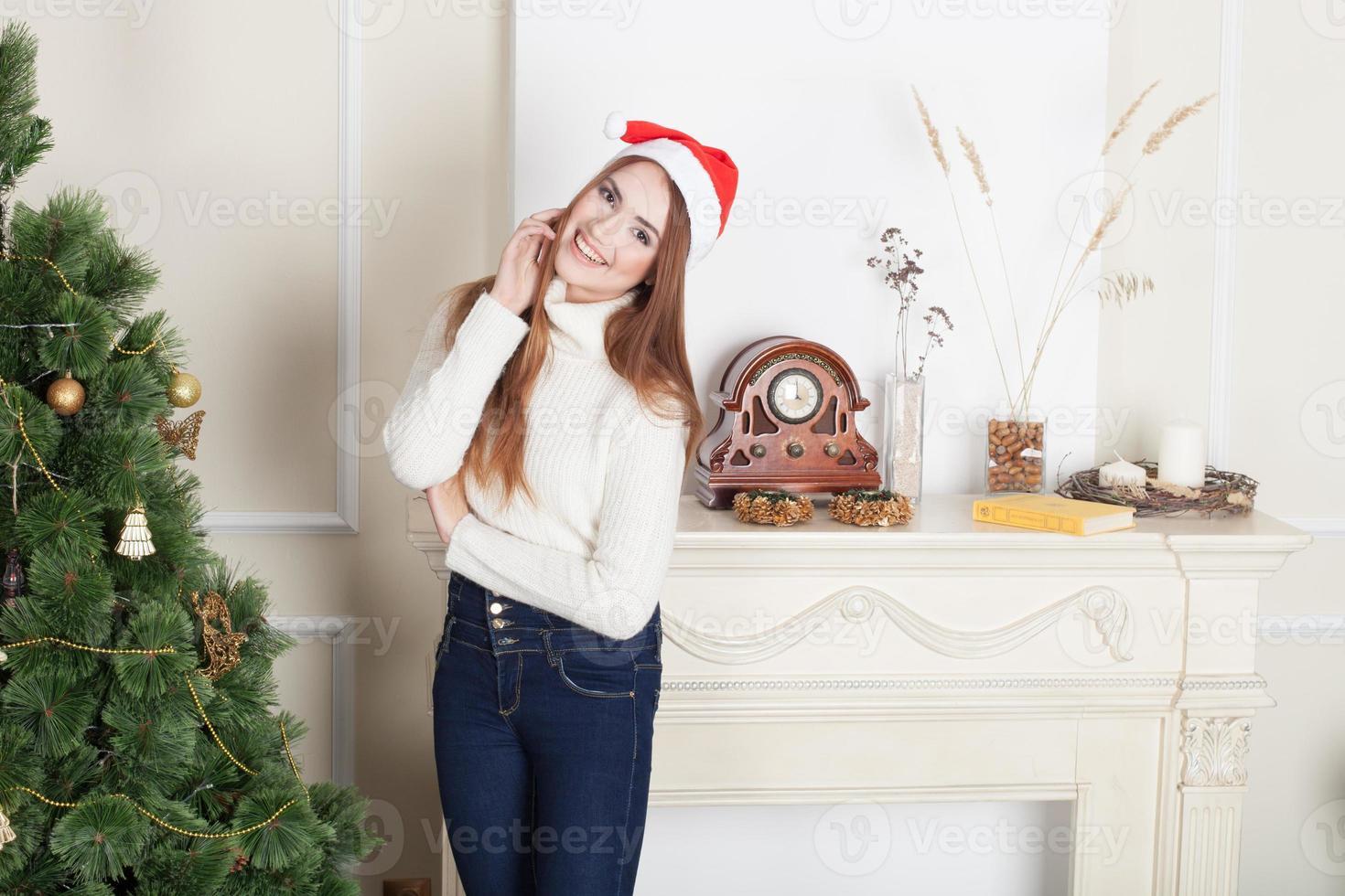 Christmas Beauty photo