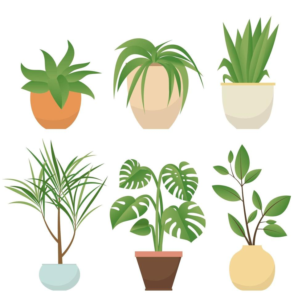Set of potted plants vector