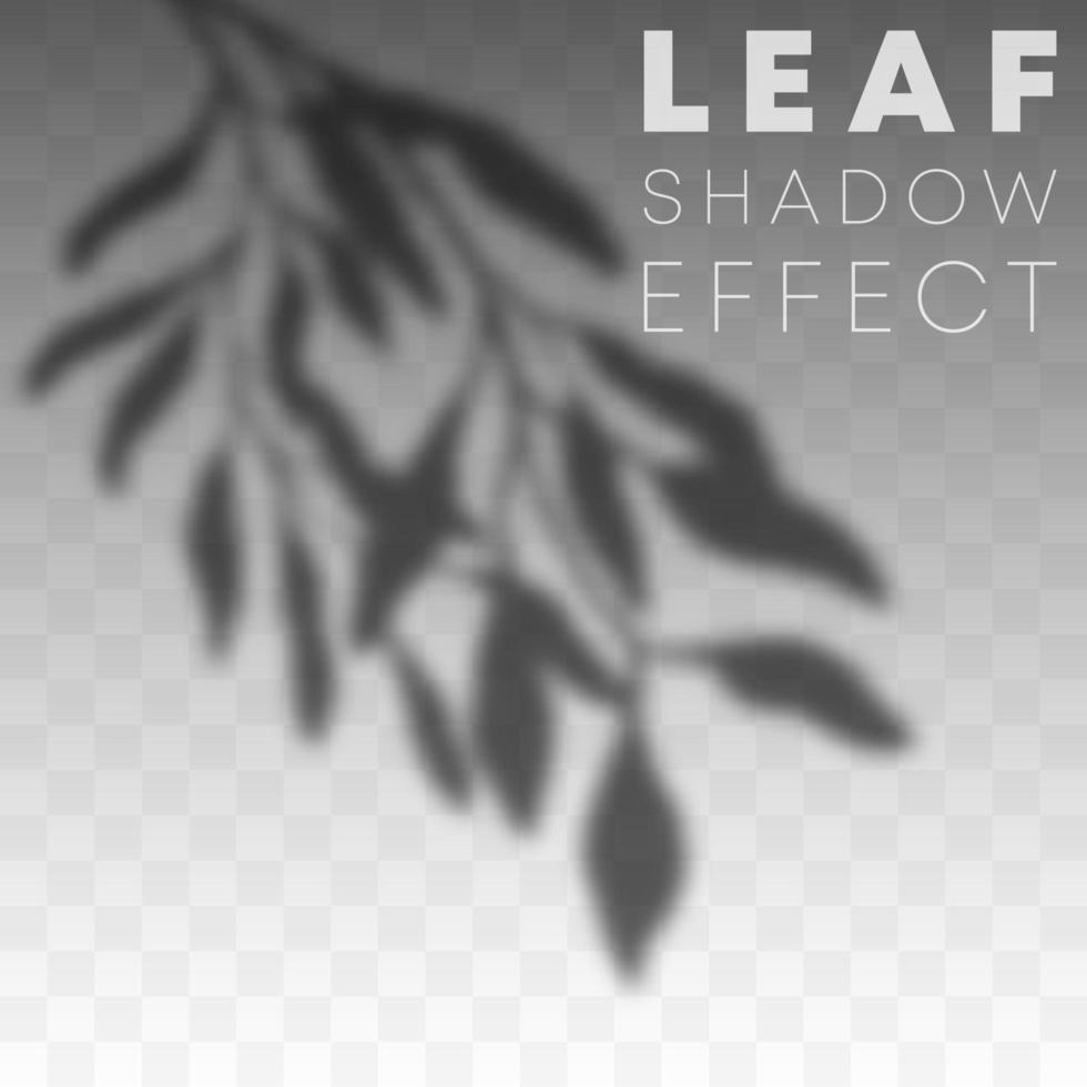 efecto de superposición de sombra de hoja vector