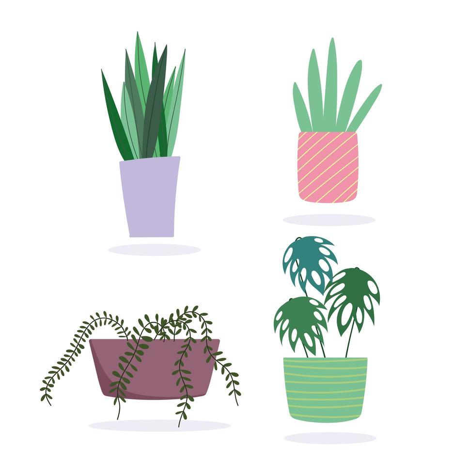 conjunto de plantas en maceta vector