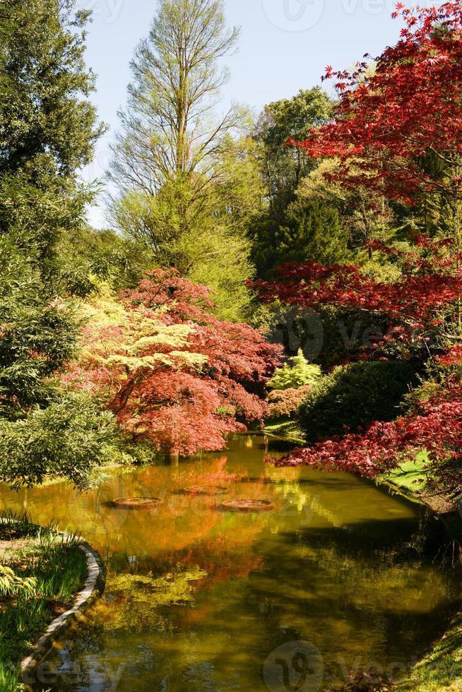Gardens of Villa Melzi on Lake Como photo