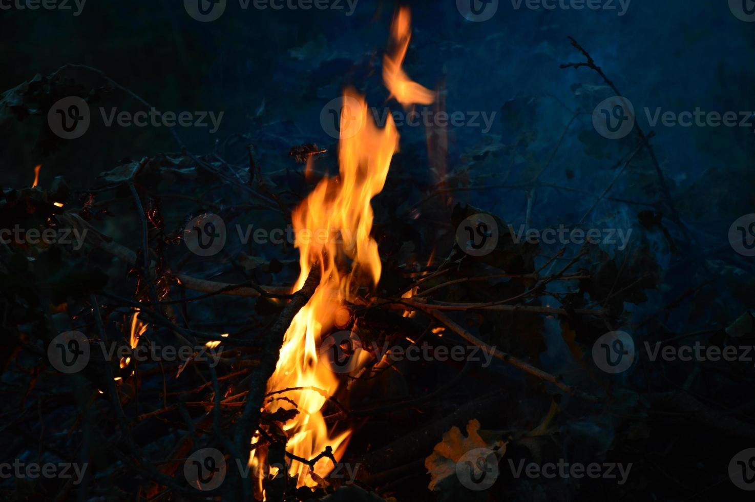 Fire in the Night photo