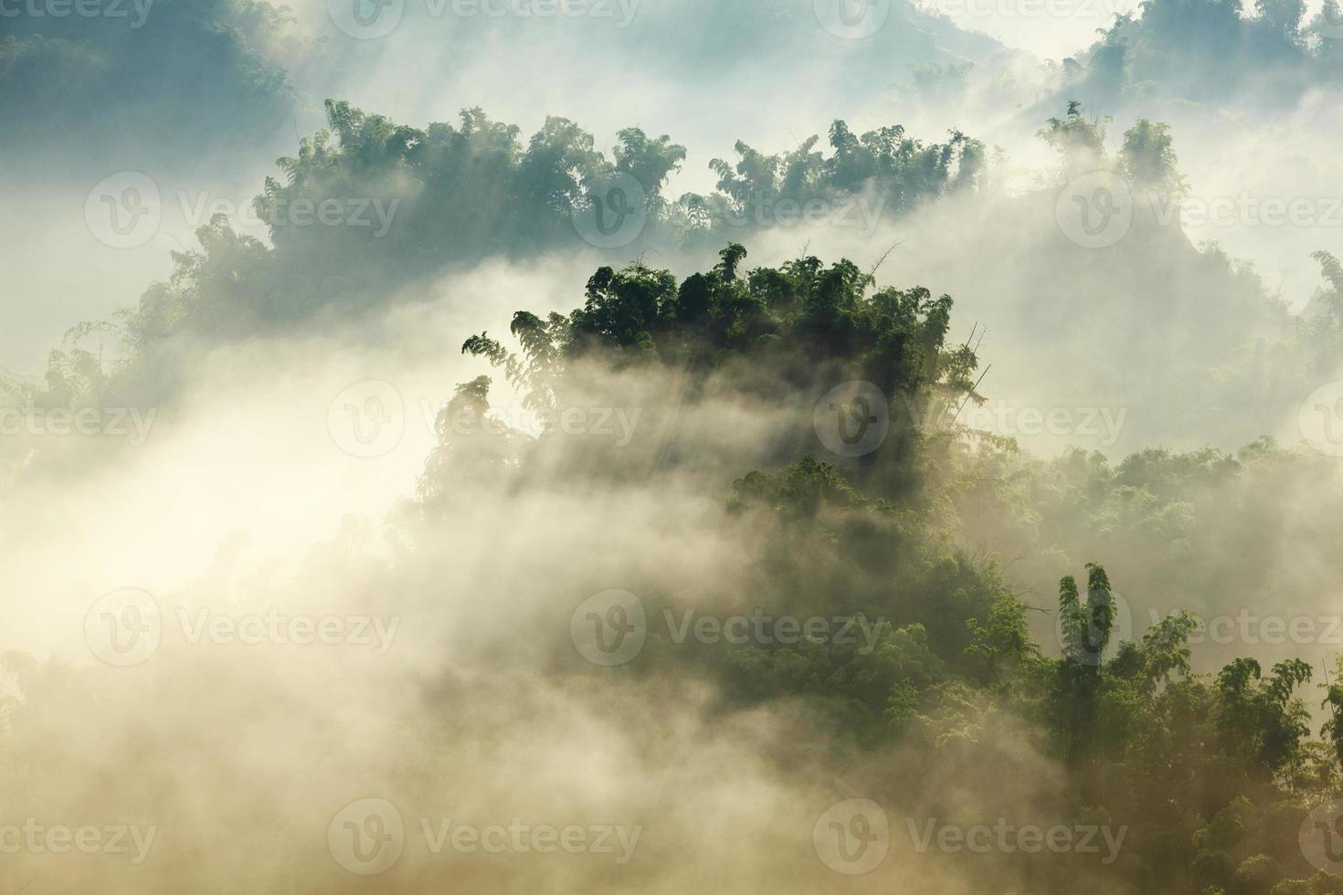 sunshine on the morning mist photo
