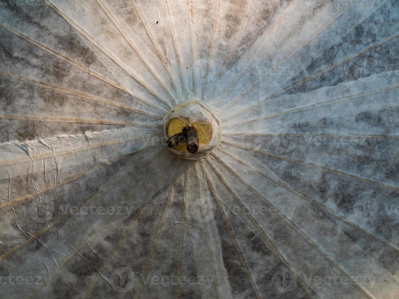 Rice paper umbrella dried in nature photo