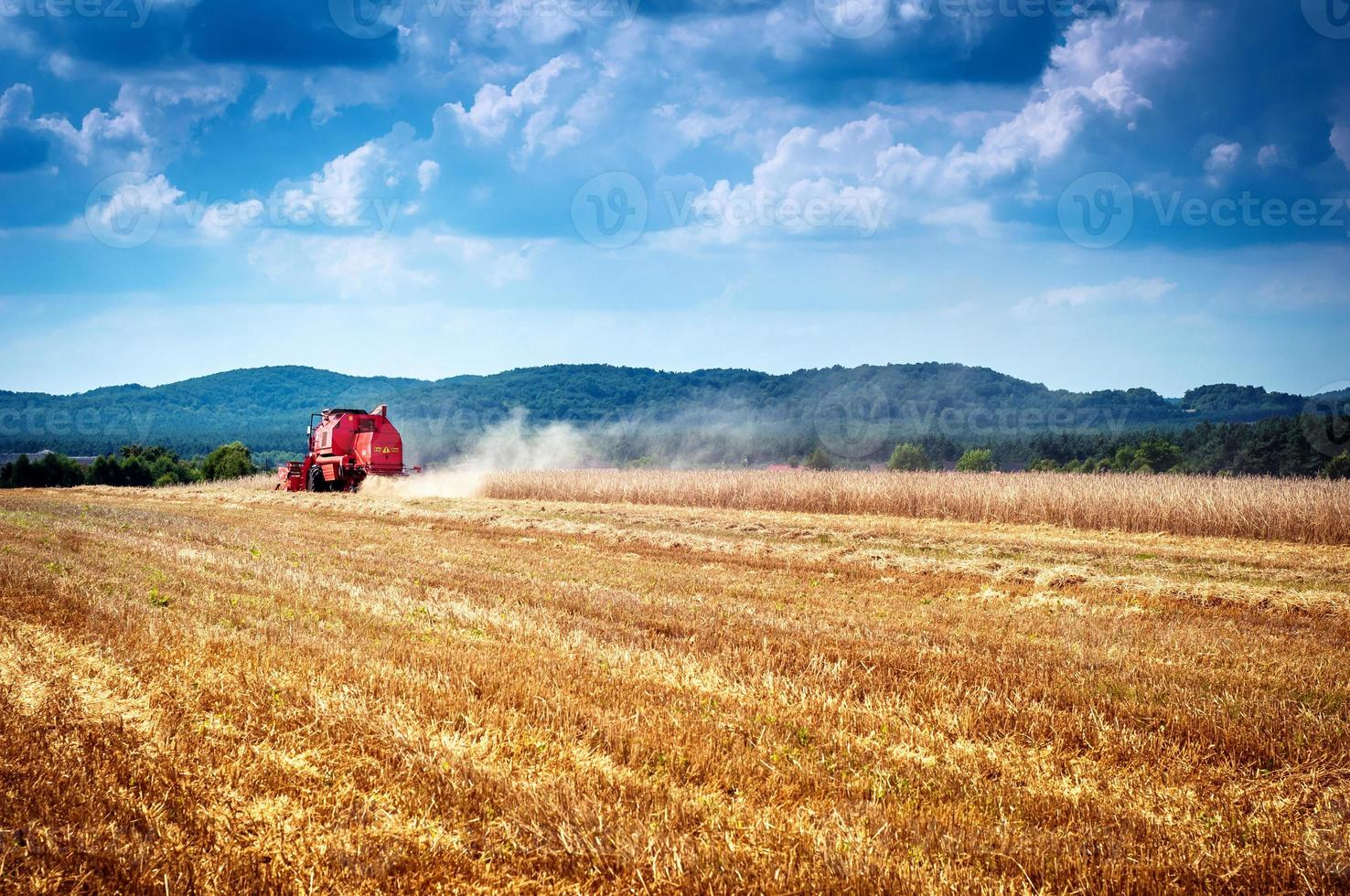combine harvester photo